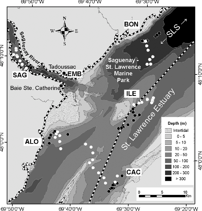 FIG. 1. Study area showing the six sites in and around the Saguenay-St. Lawrence Marine Park (dashed border), and the positions of the transmitting (black dots) and recording (white dots) vessels during the sound propagation experiments.