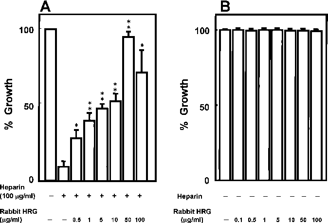 Fig. 2A, B Restorative effect of rabbit HRG on heparin-induced growth inhibition of porcine vascular smooth muscle cells. SMC (3 103 cells/100 ml) were plated in DME-10% FBS. After 2 days incubation, cells were placed in DME-0.1%FBS to induce growth arrest. The cells were then incubated for 4 days in DME-10% FBS containing various concentrations of rabbit HRG (0–100 mg/ml) and heparin (A 100 mg/ml, B no addition). SMC growth was measured with the XTT cell proliferation kit. Each value is the mean € SEM of triplicate cultures. *P<0.05, **P<0.01 compared with the value in the presence of heparin alone