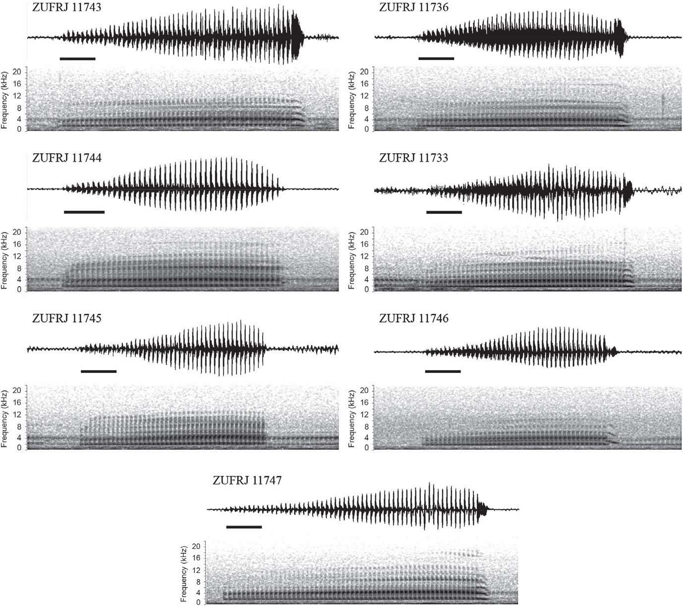 Figure 2 from Redescription of the Advertisement Call of