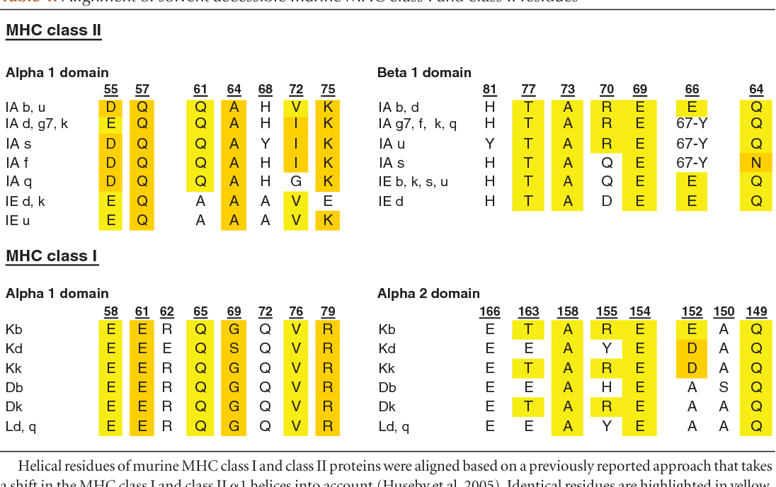 Table 1. Alignment of solvent accessible murine MHC class I and class II residues