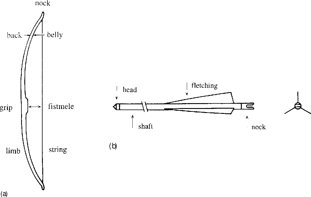 Figure 2 from Bow-arrow interaction in archery. - Semantic Scholar