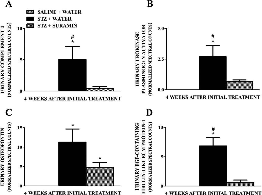 Fig. 4. Quantitation of normalized spectral counts for complement 4 (A), urokinase plasminogen activator (B), osteopontin (C), and epidermal growth factor-containing fibulin-like ECM protein 1 (D) in the urine samples of nondiabetic and diabetic rats suramin intervention at week 4 after initial treatments. Spectral counts were normalized using HIV envelope protein, which served as the internal standard. Data are expressed as means S.E. (n 4). , significant from the respective nondiabetic saline water controls. #, significant from respective diabetic STZ suramin-treated group (p 0.05).