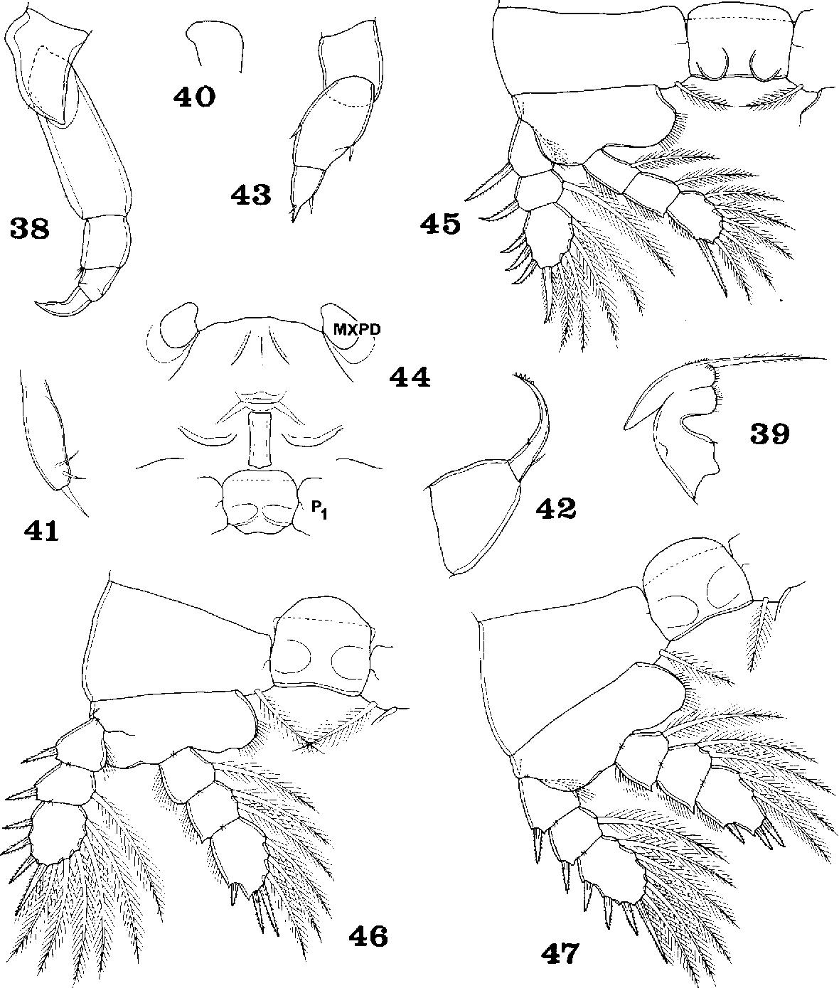 figure 38-47