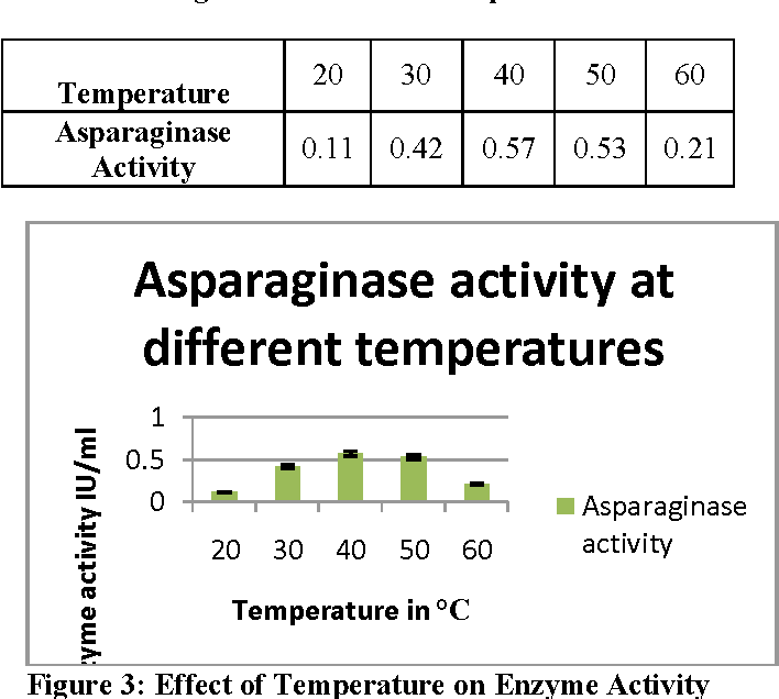Figure 3: Effect of Temperature on Enzyme Activity
