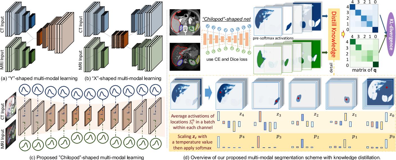 Figure 1 for Unpaired Multi-modal Segmentation via Knowledge Distillation