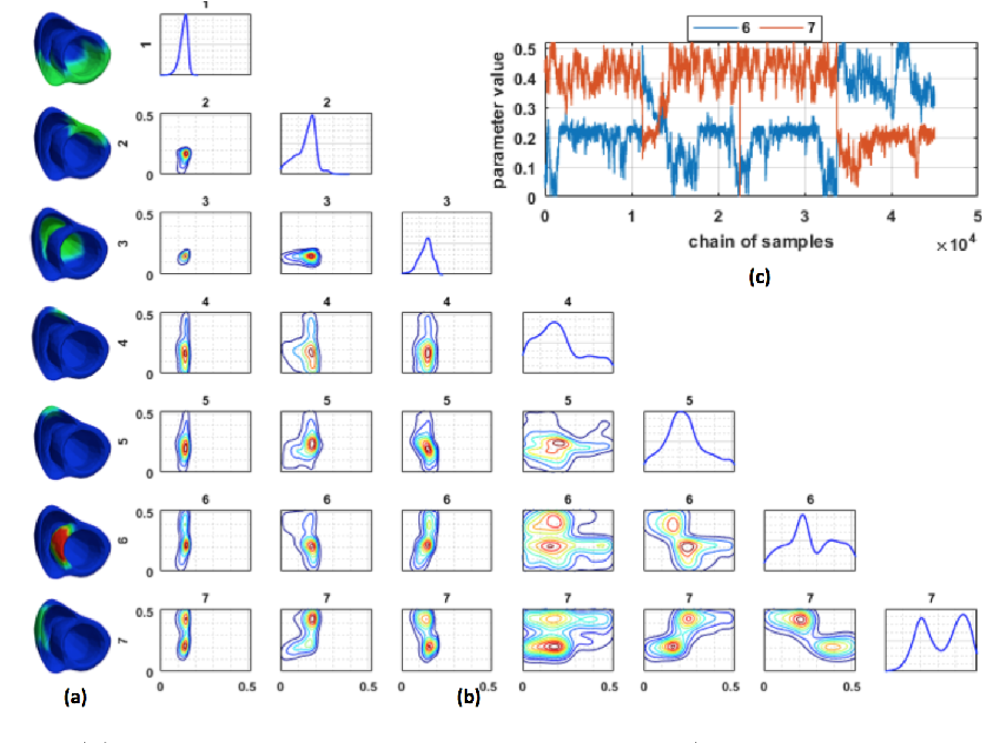 Figure 3 for Quantifying the Uncertainty in Model Parameters Using Gaussian Process-Based Markov Chain Monte Carlo: An Application to Cardiac Electrophysiological Models