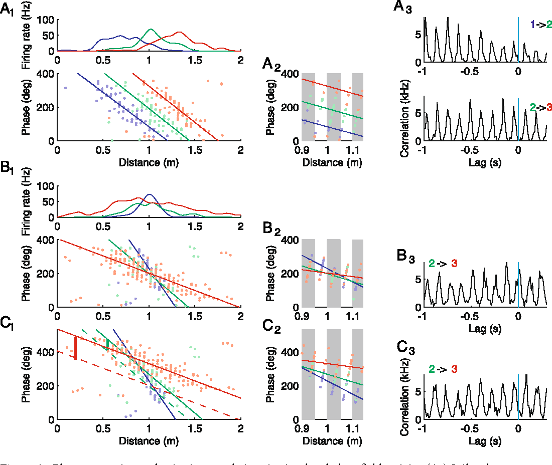 Traveling Theta Waves and the Hippocampal Phase Code - Semantic Scholar