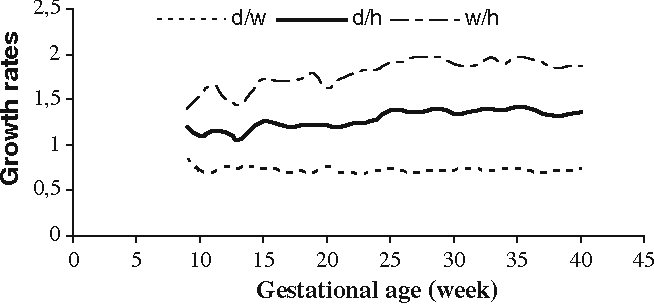 Size and location of the fetal diaphragm during the fetal period in ...