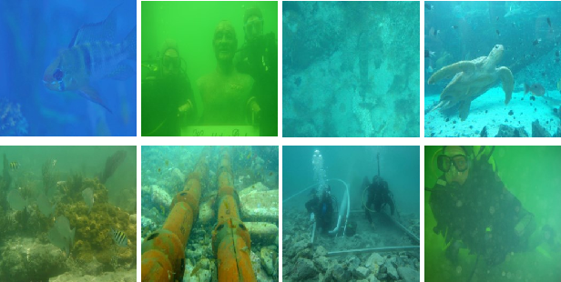 Figure 1 for Jointly Adversarial Network to Wavelength Compensation and Dehazing of Underwater Images