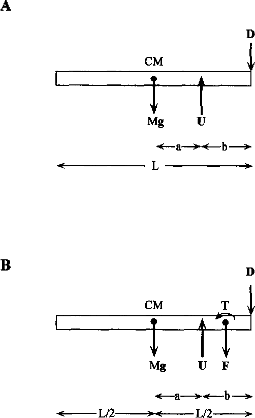 figure i  free-body diagram (a) from