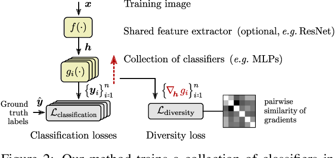Figure 3 for Evading the Simplicity Bias: Training a Diverse Set of Models Discovers Solutions with Superior OOD Generalization