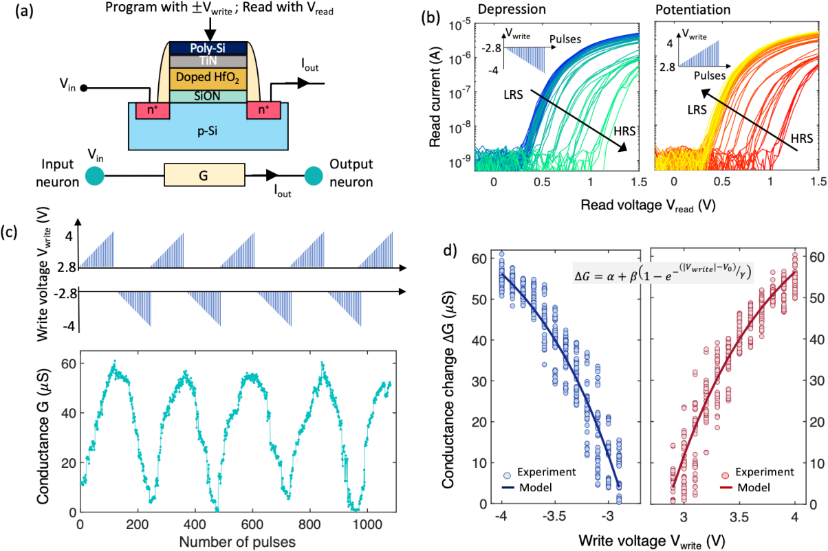 Figure 2 for Neural Sampling Machine with Stochastic Synapse allows Brain-like Learning and Inference