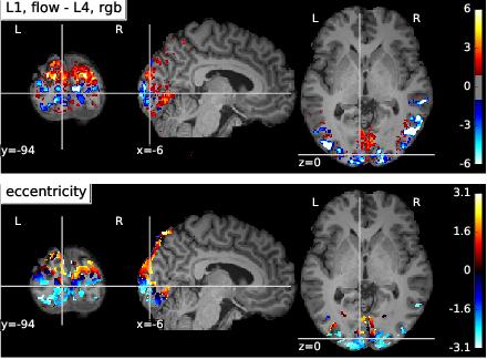 Figure 4 for Optimizing deep video representation to match brain activity