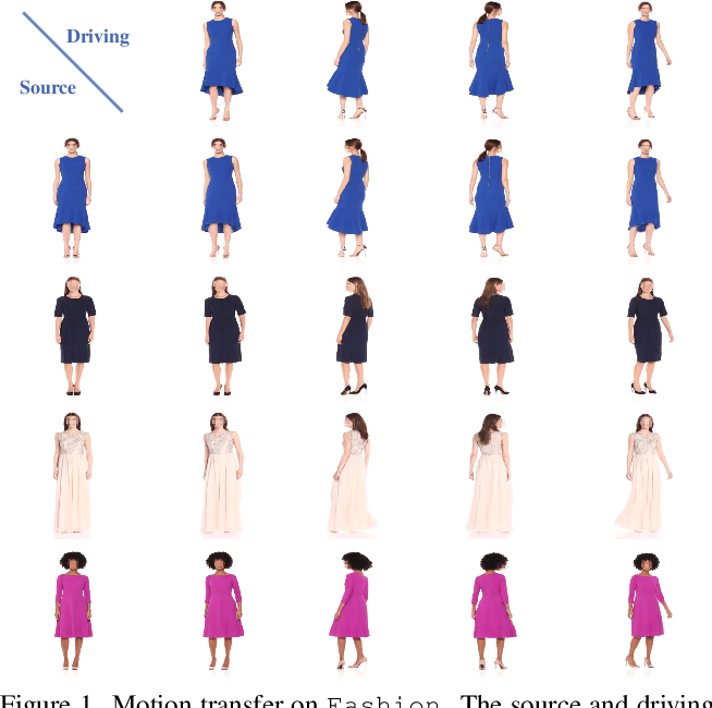 Figure 1 for Self-appearance-aided Differential Evolution for Motion Transfer