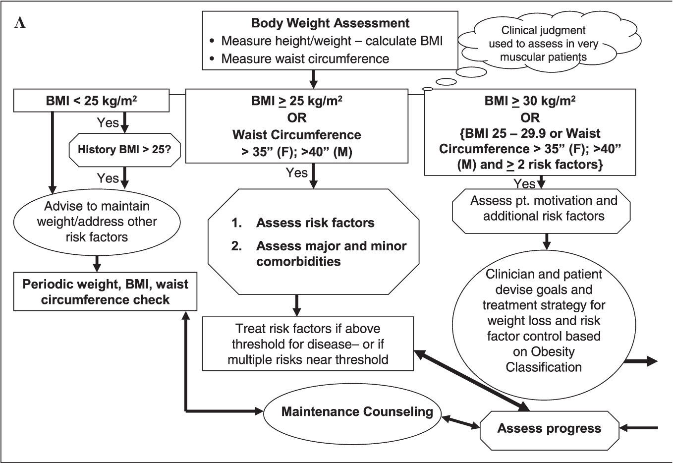 PDF] Assessment and management of obesity and comorbid