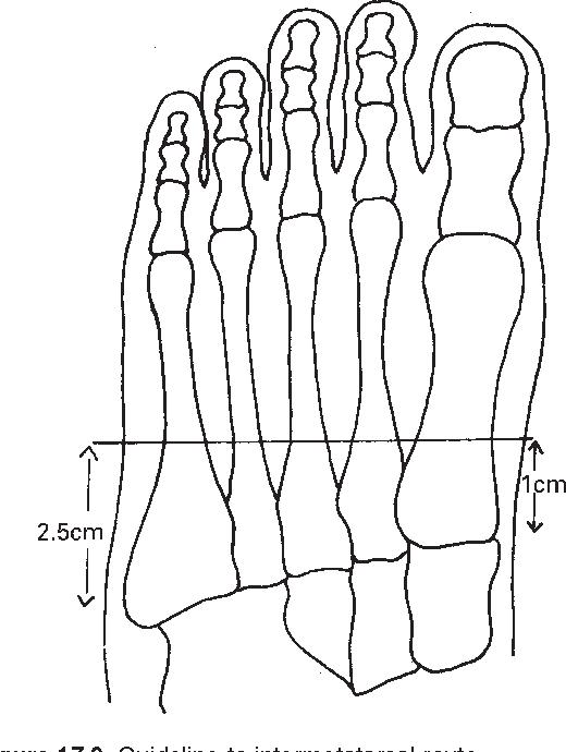 figure 17.9