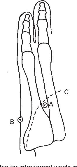 figure 17.16