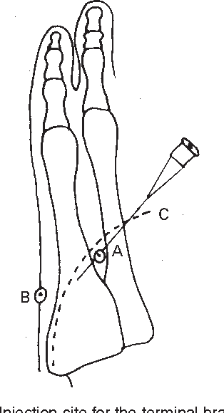 figure 17.17