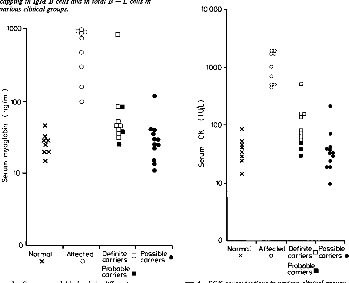 FIG 4 SCK concentrations in various clinical groups. Results are shown on a logarithmic scale.