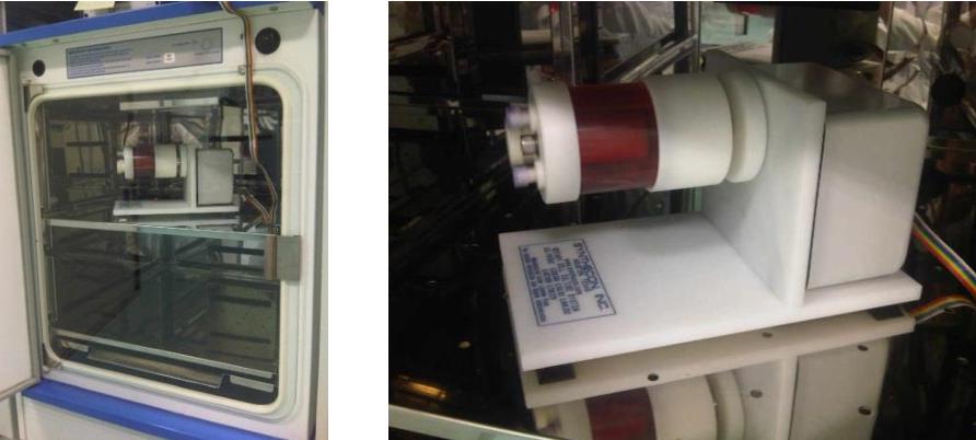 PDF] Optimising Culture Conditions for Tissue Engineering