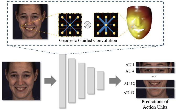 Figure 1 for GeoConv: Geodesic Guided Convolution for Facial Action Unit Recognition