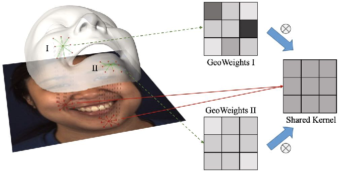 Figure 3 for GeoConv: Geodesic Guided Convolution for Facial Action Unit Recognition