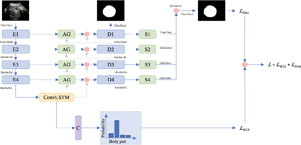 Figure 3 for FetalNet: Multi-task deep learning framework for fetal ultrasound biometric measurements
