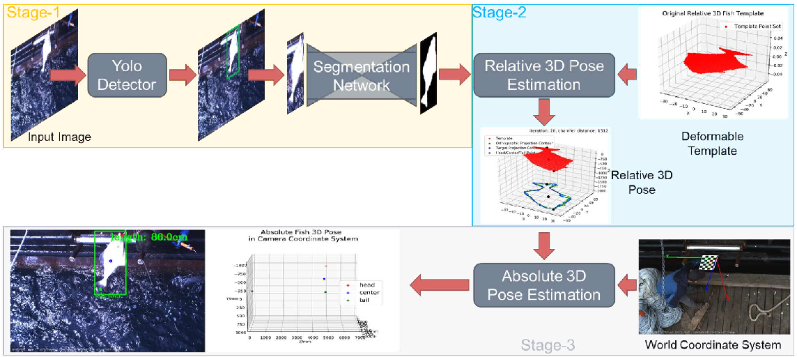 Figure 3 for Absolute 3D Pose Estimation and Length Measurement of Severely Deformed Fish from Monocular Videos in Longline Fishing