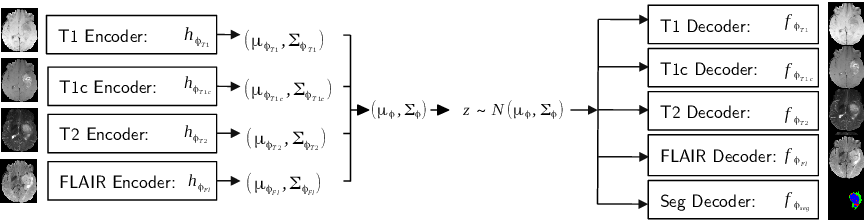 Figure 1 for Hetero-Modal Variational Encoder-Decoder for Joint Modality Completion and Segmentation