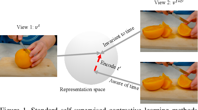 Figure 1 for Composable Augmentation Encoding for Video Representation Learning