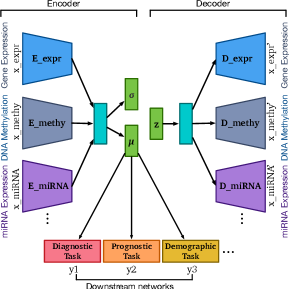 Figure 1 for OmiEmbed: reconstruct comprehensive phenotypic information from multi-omics data using multi-task deep learning