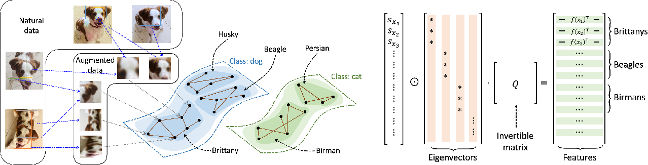 Figure 1 for Provable Guarantees for Self-Supervised Deep Learning with Spectral Contrastive Loss