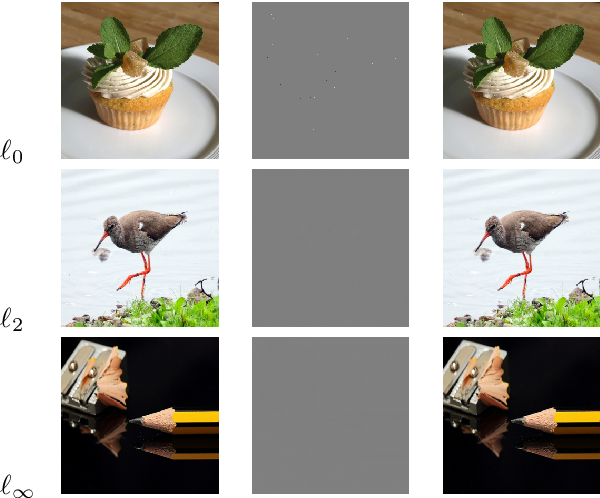 Figure 3 for Detection of Iterative Adversarial Attacks via Counter Attack