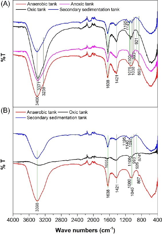 Figure 1. IR bands of the EPS from M-WWTP (A) and H-WWTP (B).