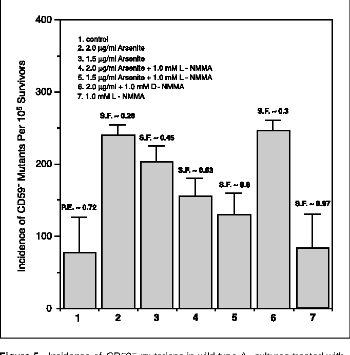 Figure 5 from Mitochondrial damage mediates genotoxicity of