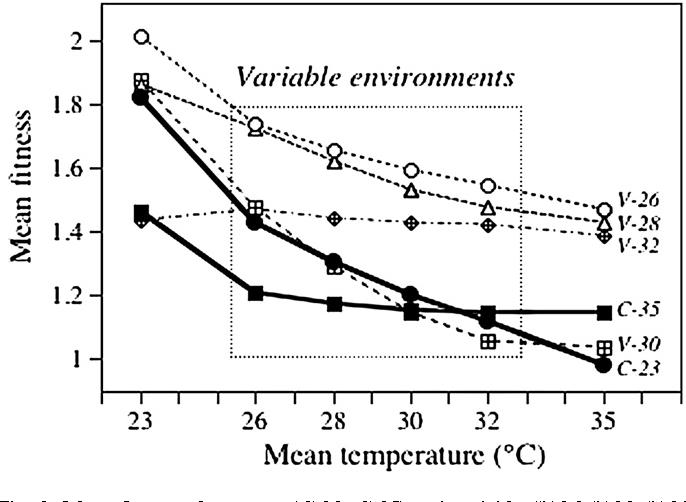 Adaptation of paramecium caudatum to variable conditions of figure 3 ccuart Images