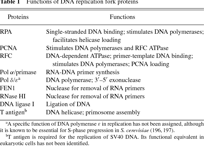 what are 3 functions of dna