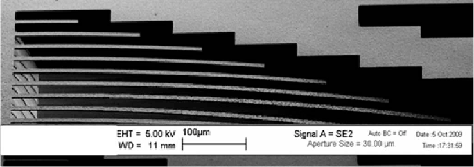 Fig. 6. A 75◦ tilted SEM image of a cantilever group of different lengths.