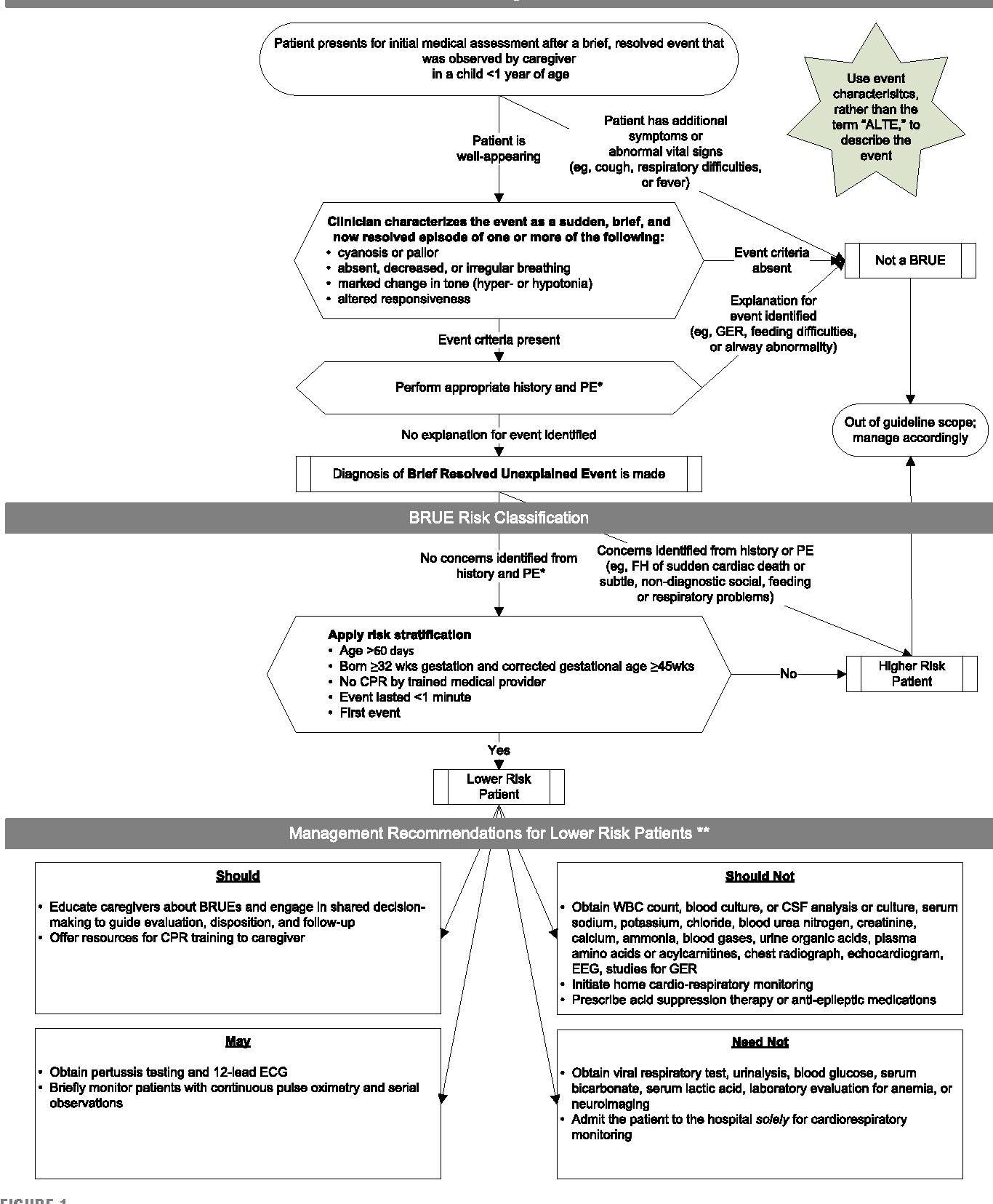 Exelent Nanoengineering Lebenslauf Embellishment - FORTSETZUNG ...