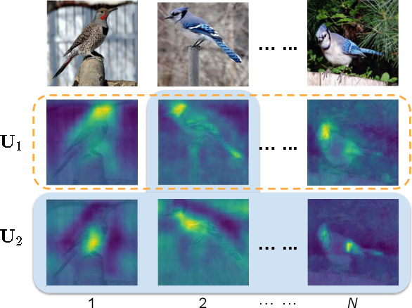 Figure 3 for Cross-X Learning for Fine-Grained Visual Categorization