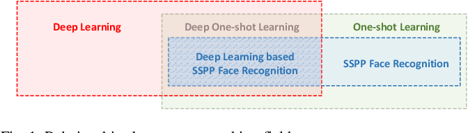 Figure 1 for Deep Learning Based Single Sample Per Person Face Recognition: A Survey
