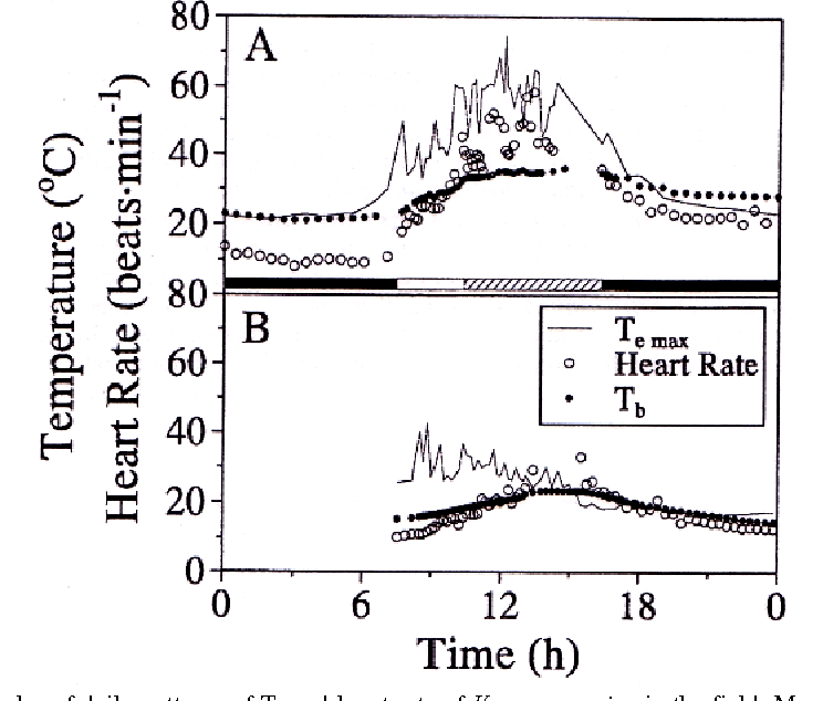 Changes in heart rate are important for thermoregulation in the figure 1 ccuart Choice Image
