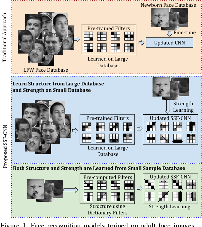 Figure 1 for Learning Structure and Strength of CNN Filters for Small Sample Size Training