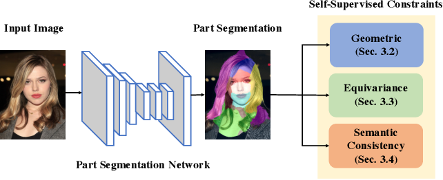 Figure 2 for SCOPS: Self-Supervised Co-Part Segmentation