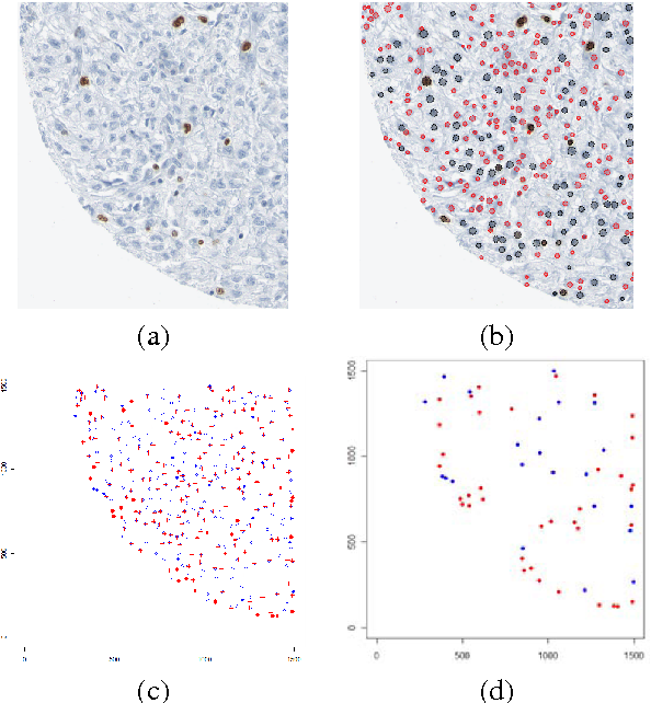 Figure 4 for Computational Pathology: Challenges and Promises for Tissue Analysis