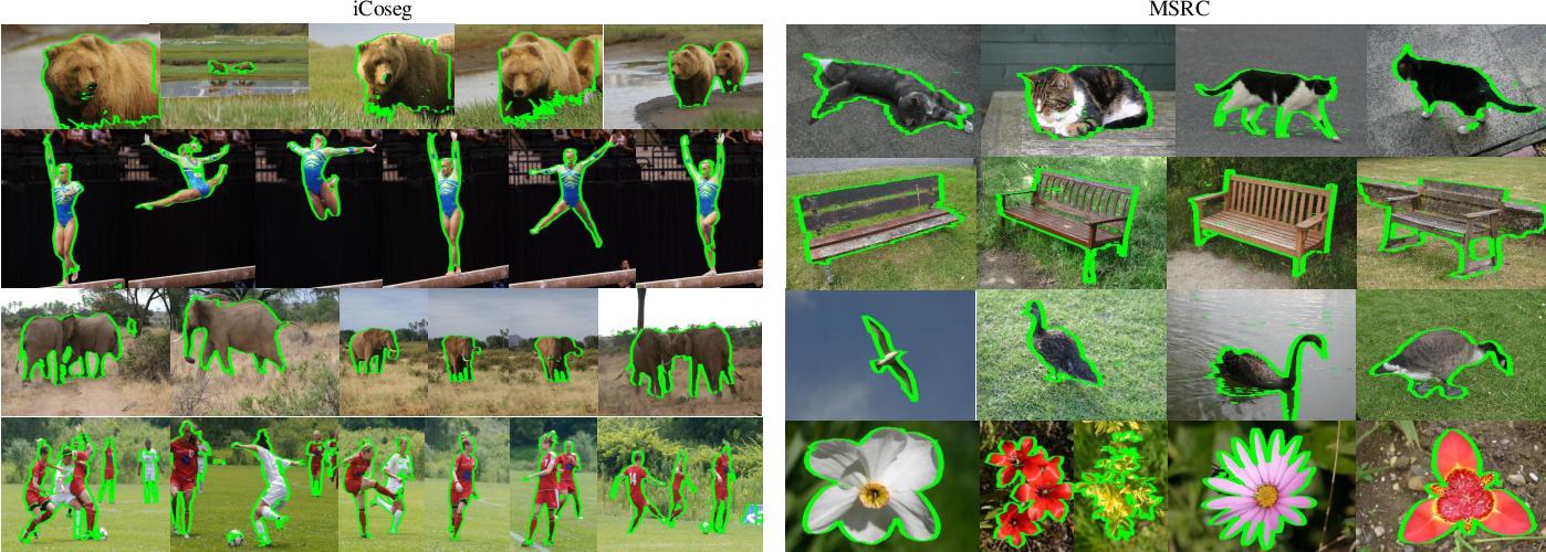 Figure 4 for Image Co-segmentation via Multi-scale Local Shape Transfer