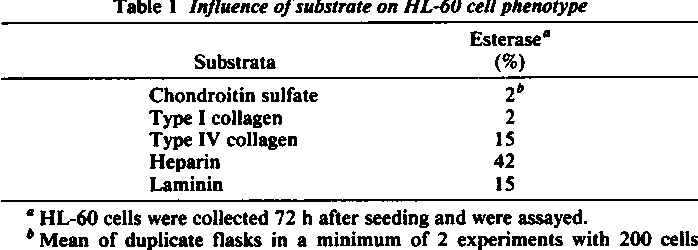 Table 1 Influence of substrate on HL-60 cell phenotype Esterase