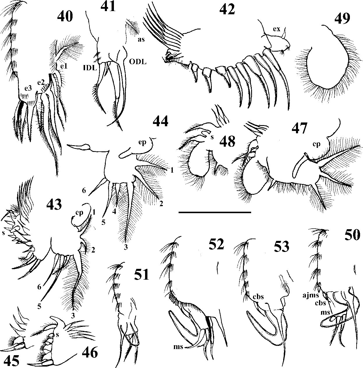 figure 40–53