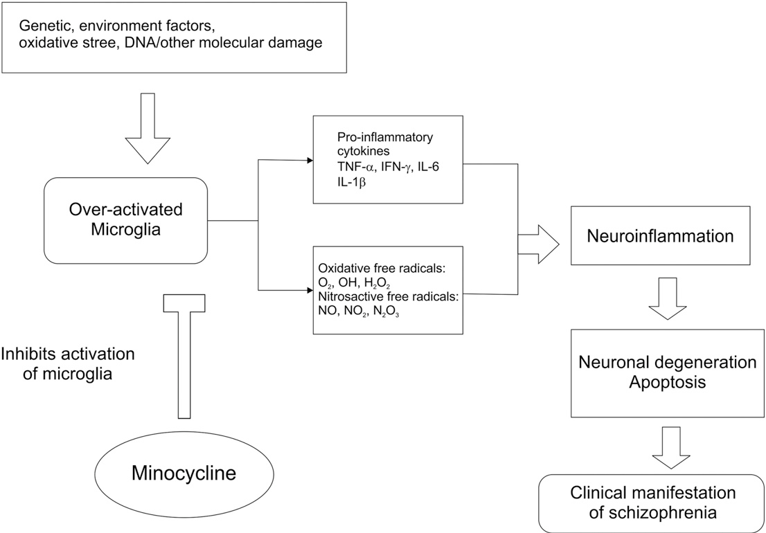 An emerging role of cGMP in the treatment of schizophrenia: A review