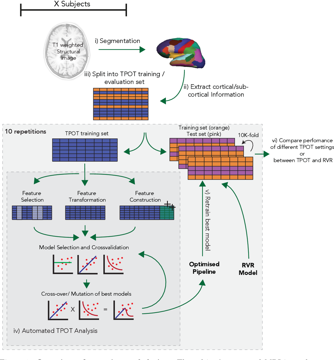 Figure 1 for Analysis of an Automated Machine Learning Approach in Brain Predictive Modelling: A data-driven approach to Predict Brain Age from Cortical Anatomical Measures